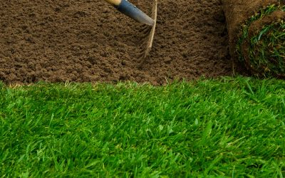 Do you have to get rid off your existing grass before installing S&K sod?