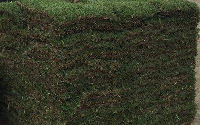 Hurricane lawn preparedness tip. #6 Restore your lawn with sod.